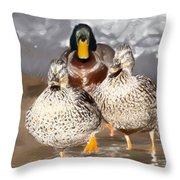 Duck - Id 16235-220255-9105 Throw Pillow