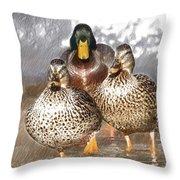Duck - Id 16235-220402-2840 Throw Pillow