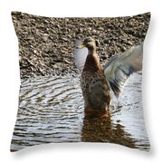 Duck In A Flap Throw Pillow