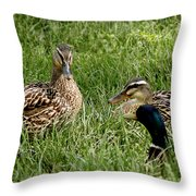 Duck Meeting At Frankenmuth Throw Pillow