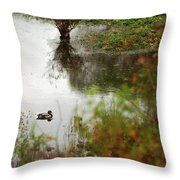 Duck On A Pond Throw Pillow