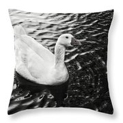 Duck On The Black Sea Throw Pillow