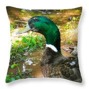 Duck On The Lake 1 Throw Pillow