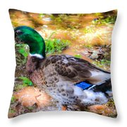 Duck On The Lake 2 Throw Pillow