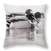 Duck On Water Throw Pillow