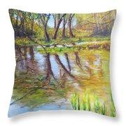 Duck Pond I Throw Pillow