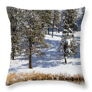 Duck Pond In Colorado Snow Throw Pillow