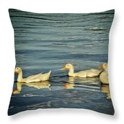 Duck Reflections Throw Pillow