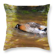Duck Submerge It Head Into The Water Looking For Food In The River 2 Throw Pillow