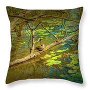 Duck Tales.  Throw Pillow