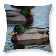 Duck Trio Throw Pillow