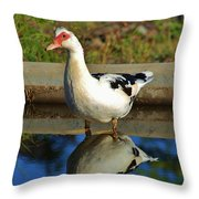 Duck Twice Throw Pillow