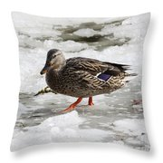 Duck Walking On Thin Ice Throw Pillow