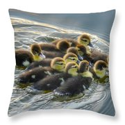 Duckling Wake Throw Pillow