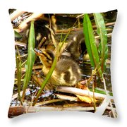 Ducklings 1 Throw Pillow