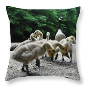 Ducklings Throw Pillow by Bill Cannon