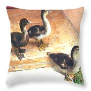 Ducklings Come To Visit Throw Pillow