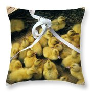 Ducklings In A Basket Throw Pillow