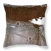 Ducks 2 Throw Pillow