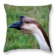 Ducks And Geese 1 Throw Pillow