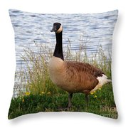 Ducks And Geese 2 Throw Pillow