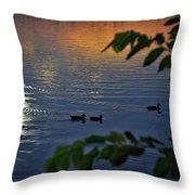 Ducks At Daybreak  Throw Pillow