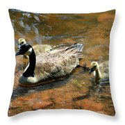 Duck Family Throw Pillow