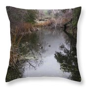 Ducks From The Bridge Throw Pillow