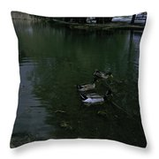 Ducks In A Pond Throw Pillow