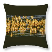 Ducks In A Row Throw Pillow
