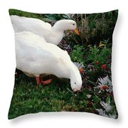 Ducks In The Garden At The Shipwright's Cafe Throw Pillow