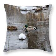 Ducks In Winter Throw Pillow