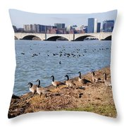 Ducks Of The Potomac Throw Pillow