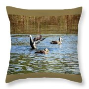 Ducks On Colorful Pond Throw Pillow