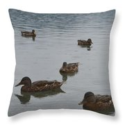 Ducks On Lake Bled Throw Pillow