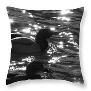 Ducks On The Canal Throw Pillow