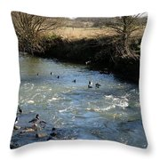 Ducks On The River In Early Spring Throw Pillow