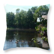 Ducks On The River Throw Pillow