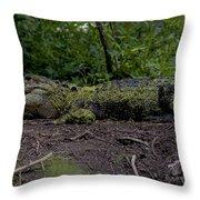 Duckweed Camouflage Throw Pillow