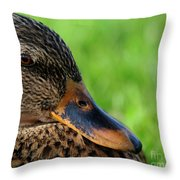 Ducky Up Close And Personal Throw Pillow