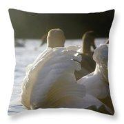 Duddingston Swan 16 Throw Pillow