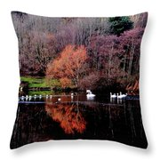 Duddingston Swan 17 Throw Pillow