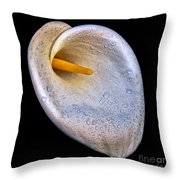 Dew Drops On Silver White Calla Lily  Throw Pillow