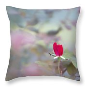 Duel Toned Ethereal Rose Bud Throw Pillow