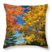 Dueling Maples Throw Pillow
