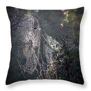 Dueling Webs Throw Pillow