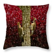 Dueling Woodpeckers Throw Pillow