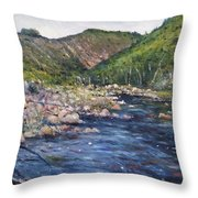Duivenhoks Dam Heidelberg South Africa 2016 Throw Pillow