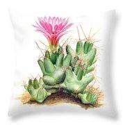 Dumpling Cactus Throw Pillow