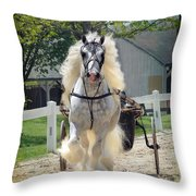 Dunbrody Drive Throw Pillow